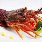 Bistro's:海鲜美酒的非凡盛宴