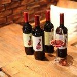 调动你听觉的美酒——智利小提琴葡萄酒