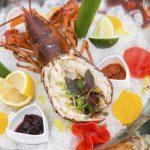 【沪】又新鲜又地道的加拿大龙虾……还有什么比这更令人动情吗?