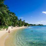 【京】巴巴多斯美食节在即 品味加勒比海风情