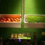 优果(Yogojuice)–值得推崇的绿色健康低脂饮品餐吧